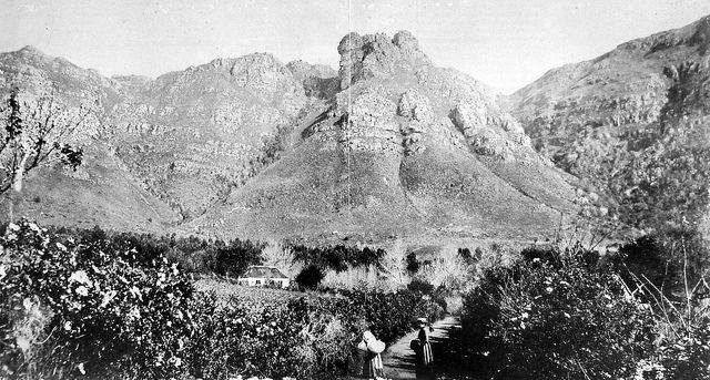 Kirstenbosch farm c1890