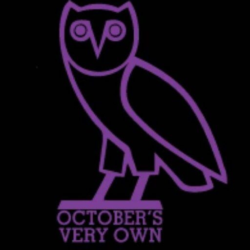purple owl . OVO !