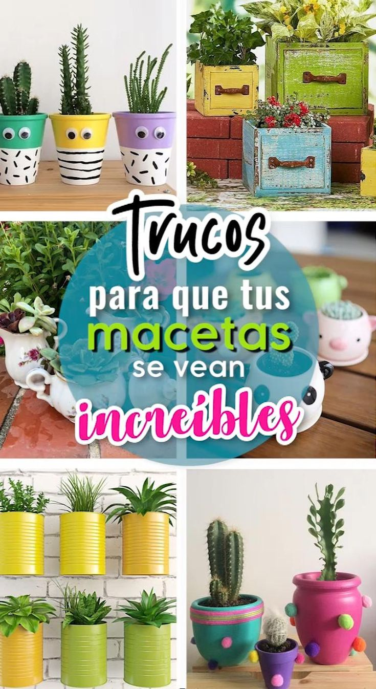 Best Garden Decorations Tips and Tricks You Need to Know - Modern Flower Pot Crafts, Flower Pots, Amazing Gardens, Beautiful Gardens, Arts And Crafts Projects, Diy Projects, Retaining Wall Design, Simple Web Design, Plastic Bottle Crafts