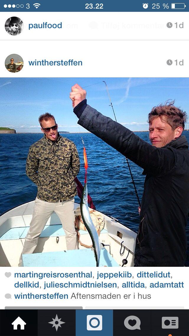Hornfisken er kommet til Københavns havn