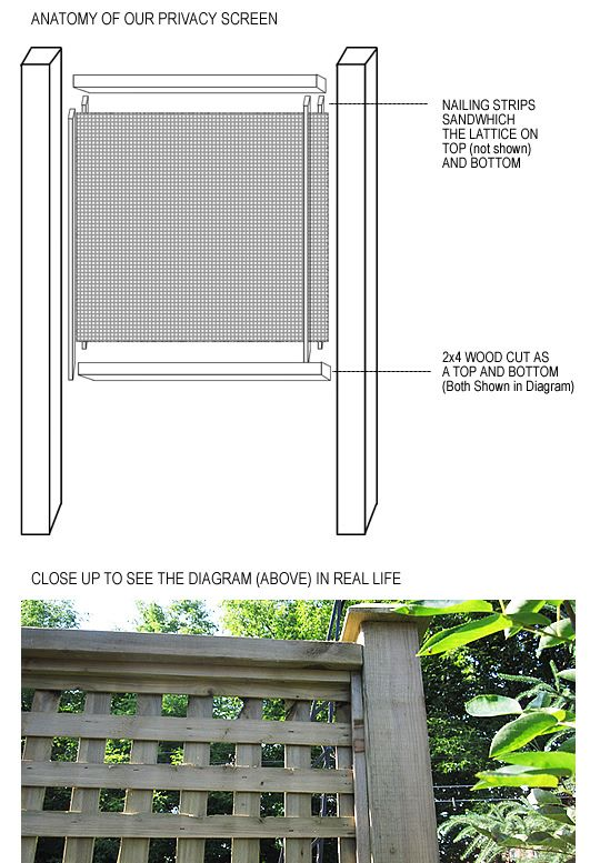 Garden privacy screen tutorial at aubreyandlindsay.blogspot.com
