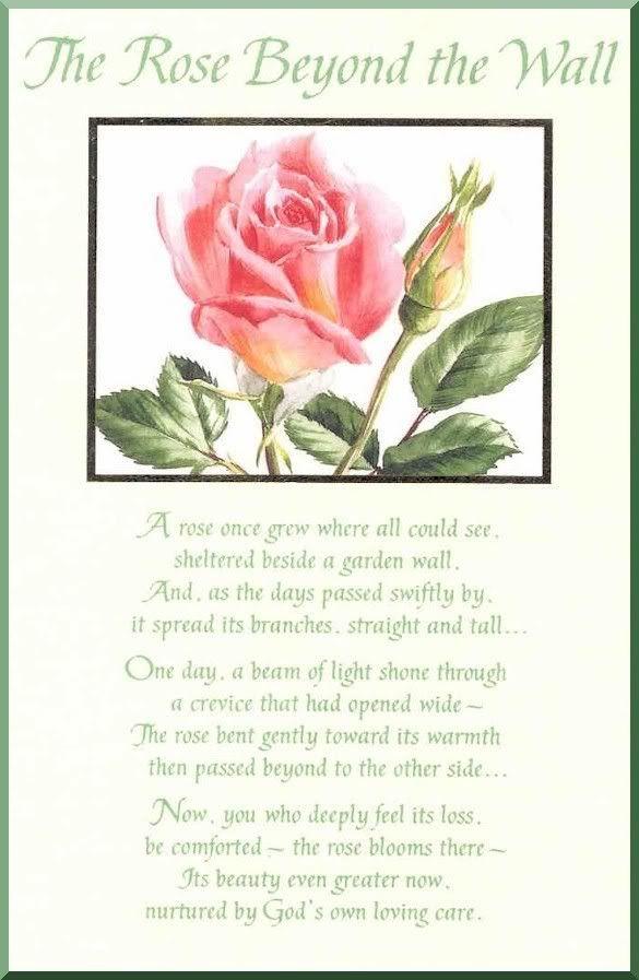 forum  u00bb the rose beyond the wall  u00bb notoverthehill