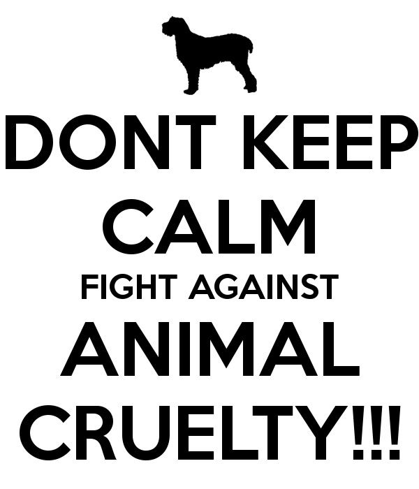 Animals are living things created my God just like us. They only kill for them to live. We killed them many times too for mostly money. So lets stop this Animal cruelty NOW!