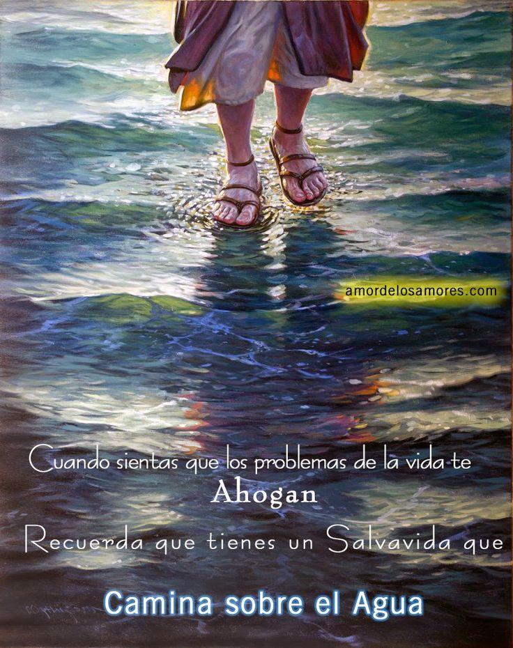 LECTURA DEL SANTO EVANGELIO SEGÚN SAN MATEO (14, 22-36): 22 En seguida, obligó a los discípulos que subieran a la barca y pasaran antes que él a la otra orilla, mientras él despedía a la multitud. …