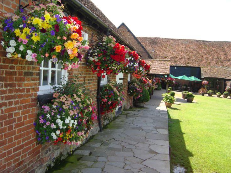 The Garden In Full Bloom