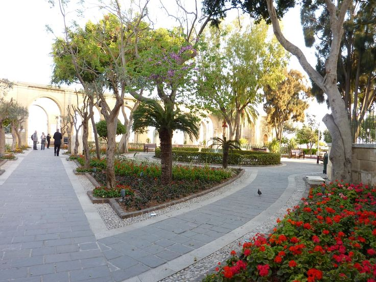 Malta - Flowers in La Valletta