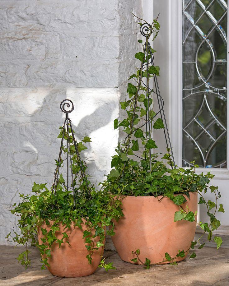 22 best Old World Garden images on Pinterest | Diy landscaping ideas ...