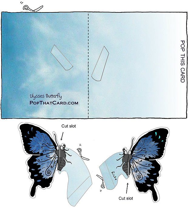 Make a butterfly pop-up-card - PopThatCard.com Free printablem, video tutorial.