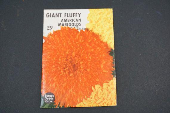 Seed Package, Burpee Seeds, W. Atlee Burpee Co., American Marigolds, Vintage 1950's  Vintage Garden, Horticulture Greenhouse, Free Ship