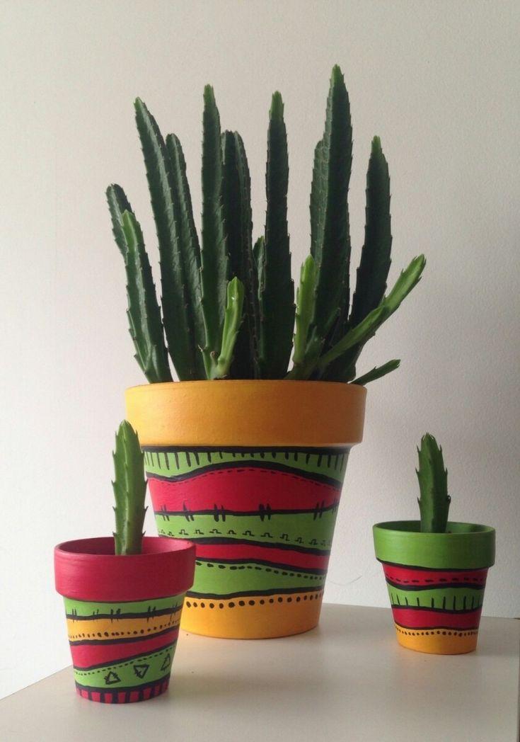 maceta pintada para cactus n°8