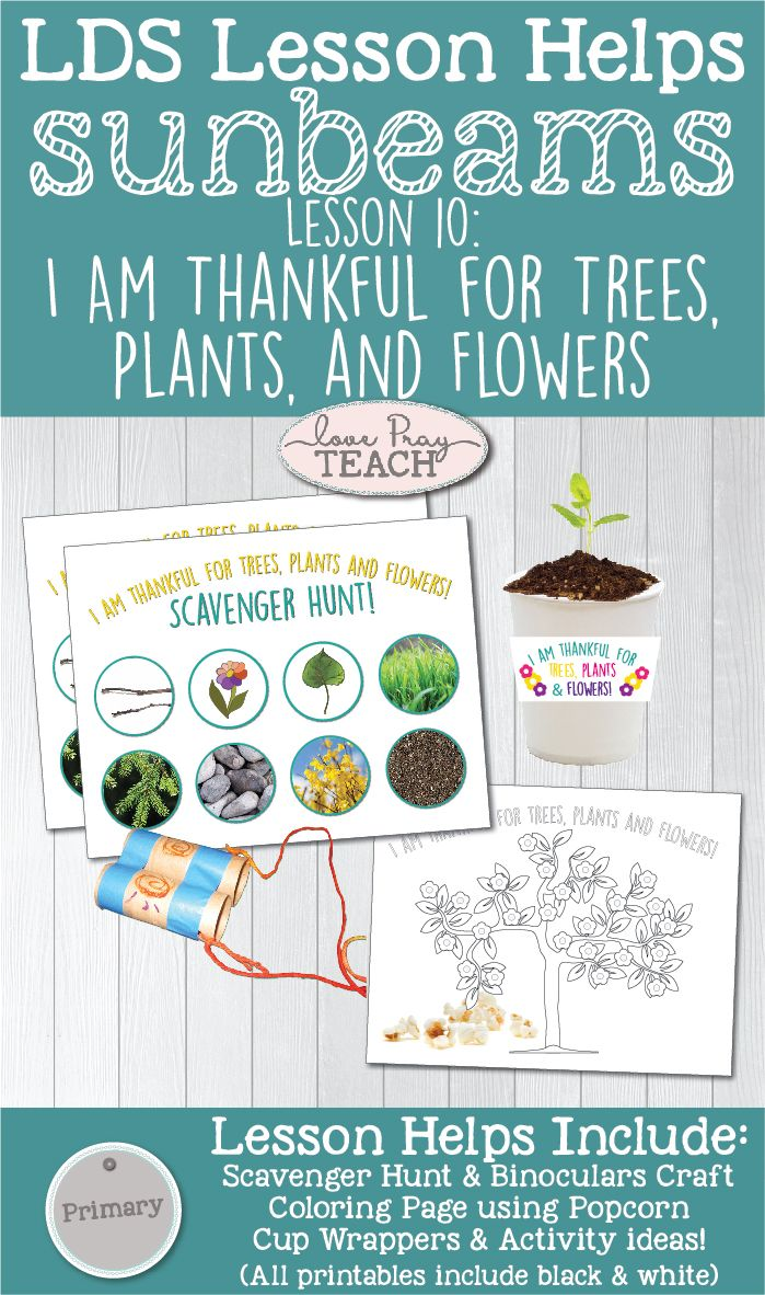 Primary 1 Sunbeams Lesson 10 I Am Thankful For Trees Plants And