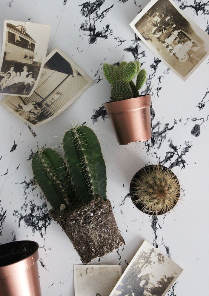 Turn those black plastic plant pots into something more presentable in just a few quick minutes!