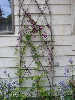rustic twig trellis--how high do I have to make it to surround all of my flower beds and keep my lovely dog out?!