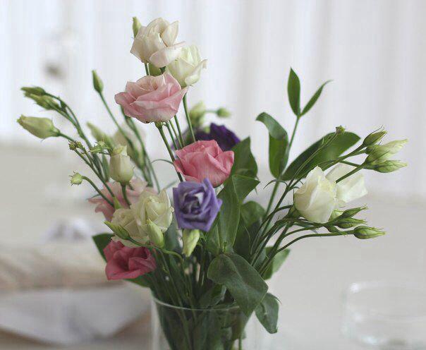 Полевые цветы часть декора стола молодых