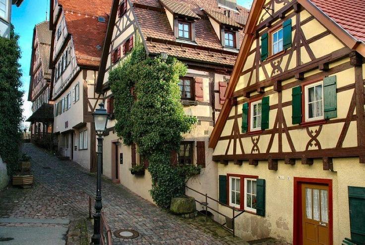The village of Altensteig - Germany