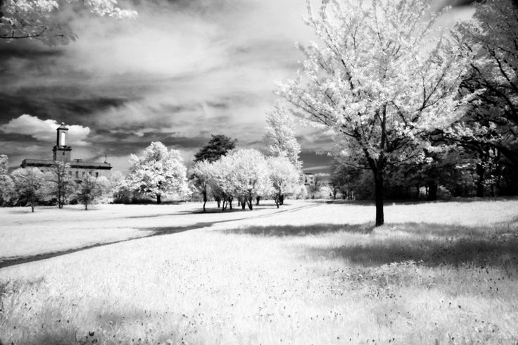 filtered photograpy | IR Filter and Infrared Photography :Digital Photography Tutorials