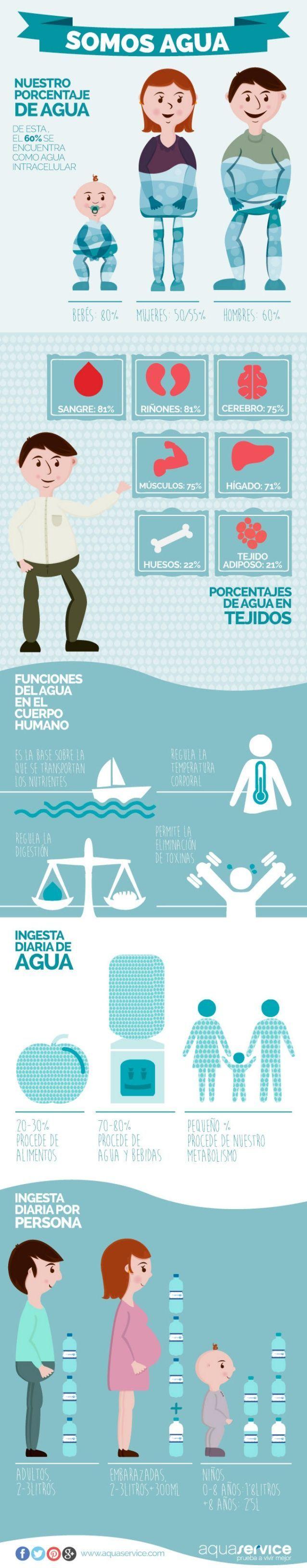 La importancia de agua en nuestro cuerpo, lea la infografía. #nutricioninfografia