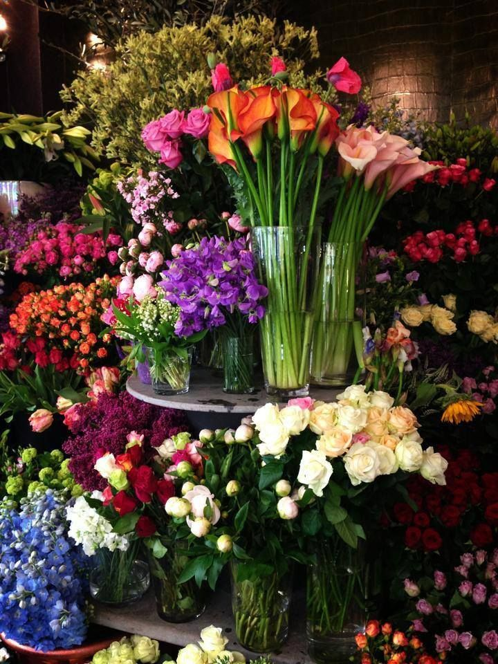 Love to go to the flower shops-gardening section and get fresh cut flowers. Tulips, gladiolas,sweet peas & etc. They always brightens my day!