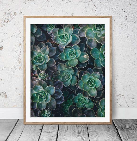 Succulent print Cactus print Circle print Cactus art