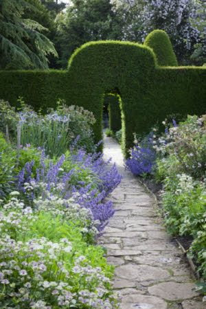 Nepeta, astrantia and iris in The Old Garden at Hidcote, Gloucestershire,in June