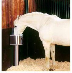 Nelson Automatic Waterers I Have These In All My Stalls