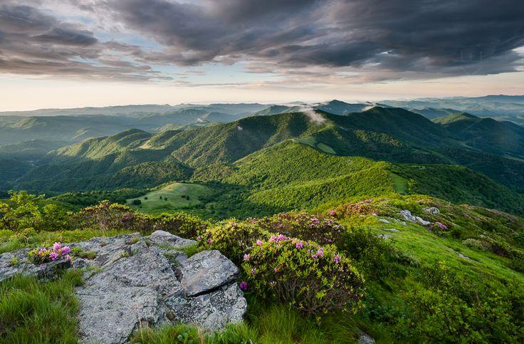 Grassy-Ridge-Spring-Green-NEW-4016.jpg (900×591)
