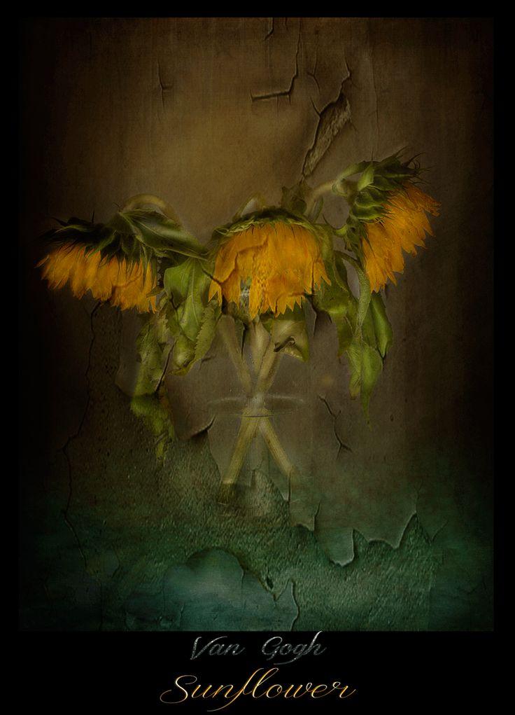Van Gogh`s Sunflowers