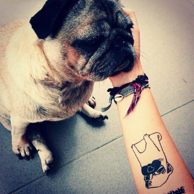 outline pug tattoo tattoo ideas pinterest pug tattoo tattoo and tatting