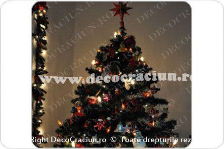 Brad de Craciun impodobit cu globuri si instalatii luminoase pentru pomul de Craciun. Christmas Tree decorating idea