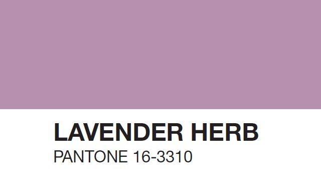 11 Best Images About Couch Pantone 16 3310 Lavender Herb