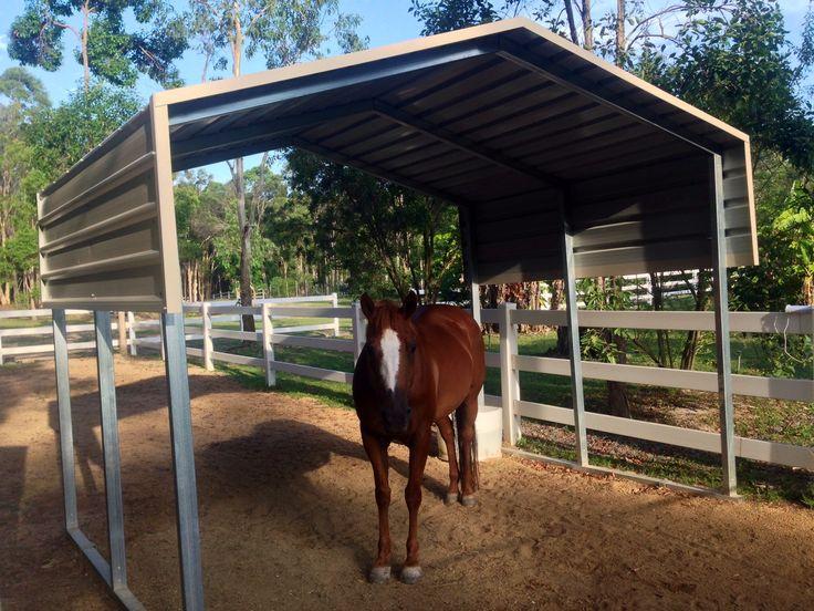 Horse Shelters Horse Shelter Horse Shelter Horses