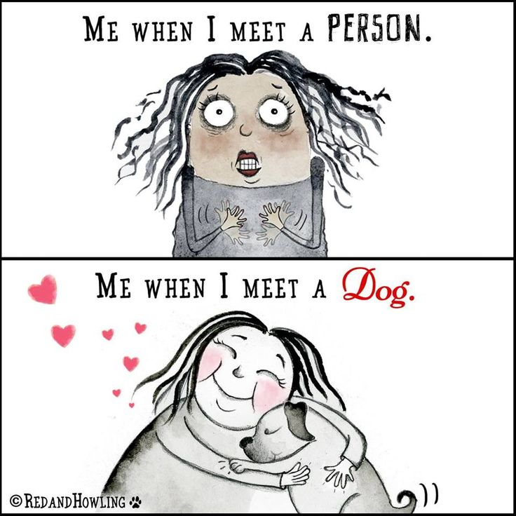 So very true.  Dogs let you know how they think of you, people seem to deceive you.