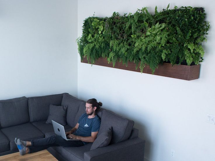 Self-Watering Vertical Garden Models Bring Greenery Indoors