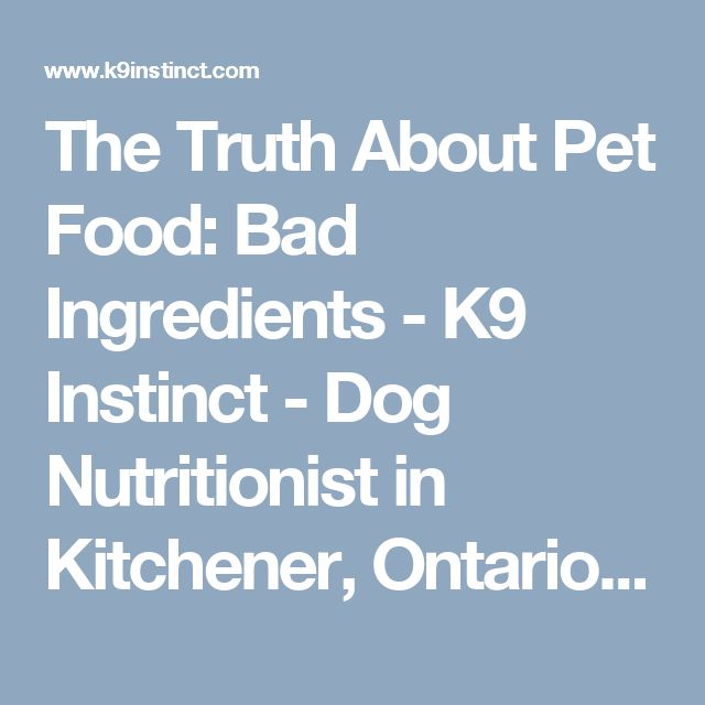 The Truth About Pet Food: Bad Ingredients - K9 Instinct - Dog Nutritionist in Kitchener, Ontario, Canada. K9 Instinct Blog! Dog Nutrition consultations online!