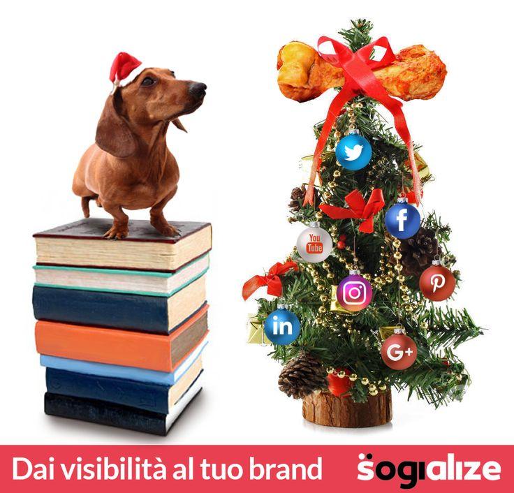Buon #Natale a tutti, social e non :) #SMM #socialmediamarketing #socialmediatips #marketing #buonefeste