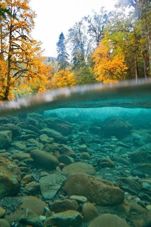 Skokomish River, Washington
