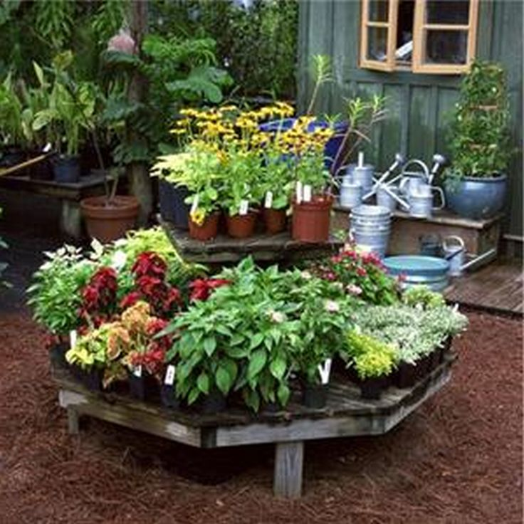 1000 images about Green thumb on Pinterest Gardens Container