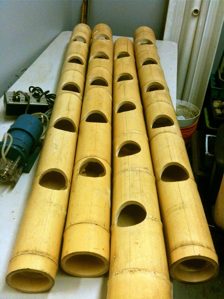 Bamboo alternative to PVC piping. Bamboo is a very useful plant.