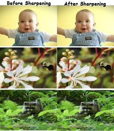 How to fix blurry pictures online? (Unblur photos)  Do you want to improve or sharpen your blurry pictures? Check this article to fix blurry pictures online or unblur a photo through android, ios apps.
