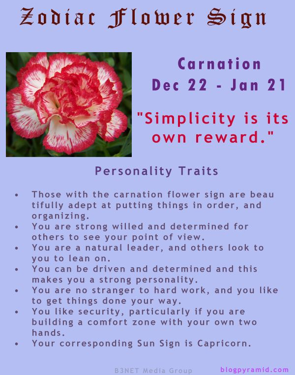 Divine Spark:  #Zodiac Flower Sign ~ Carnation December 22 - January 21 (#Capricorn).