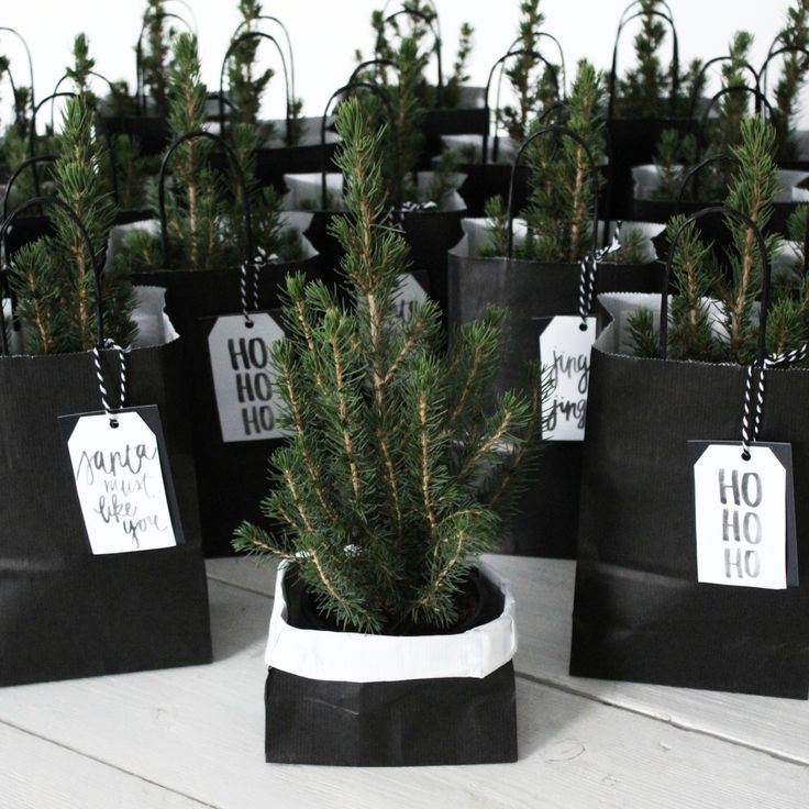 25+ Best Ideas About Christmas Gifts For Coworkers On
