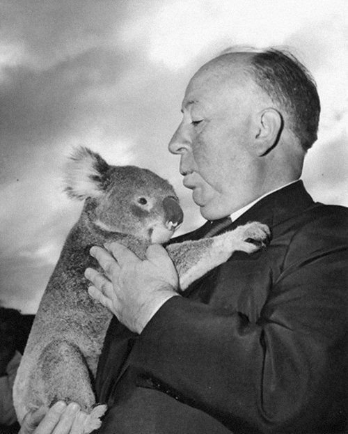Alfred Hitchcock with a koala bear at the Sydney Zoo during one of his many his visits to Australia to promote one of his classical movies, 1960