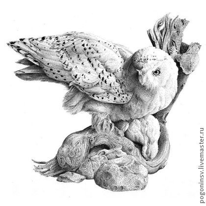 """картина """"Полярная сова"""" - полярная сова,графика,тушь,птица,животные,картина"""