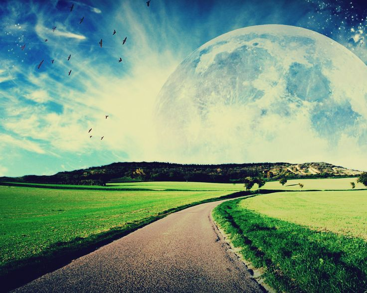 Aim for the moon. If you miss, you may hit a star. W. Clement Stone