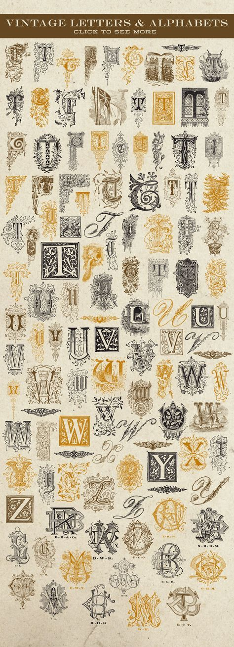 This is a collection of vintage vector letter / initial / dropcap & monogram graphics that have been carefully chosen from a variety of sources from the late 1800's and early 1900's. They are the real