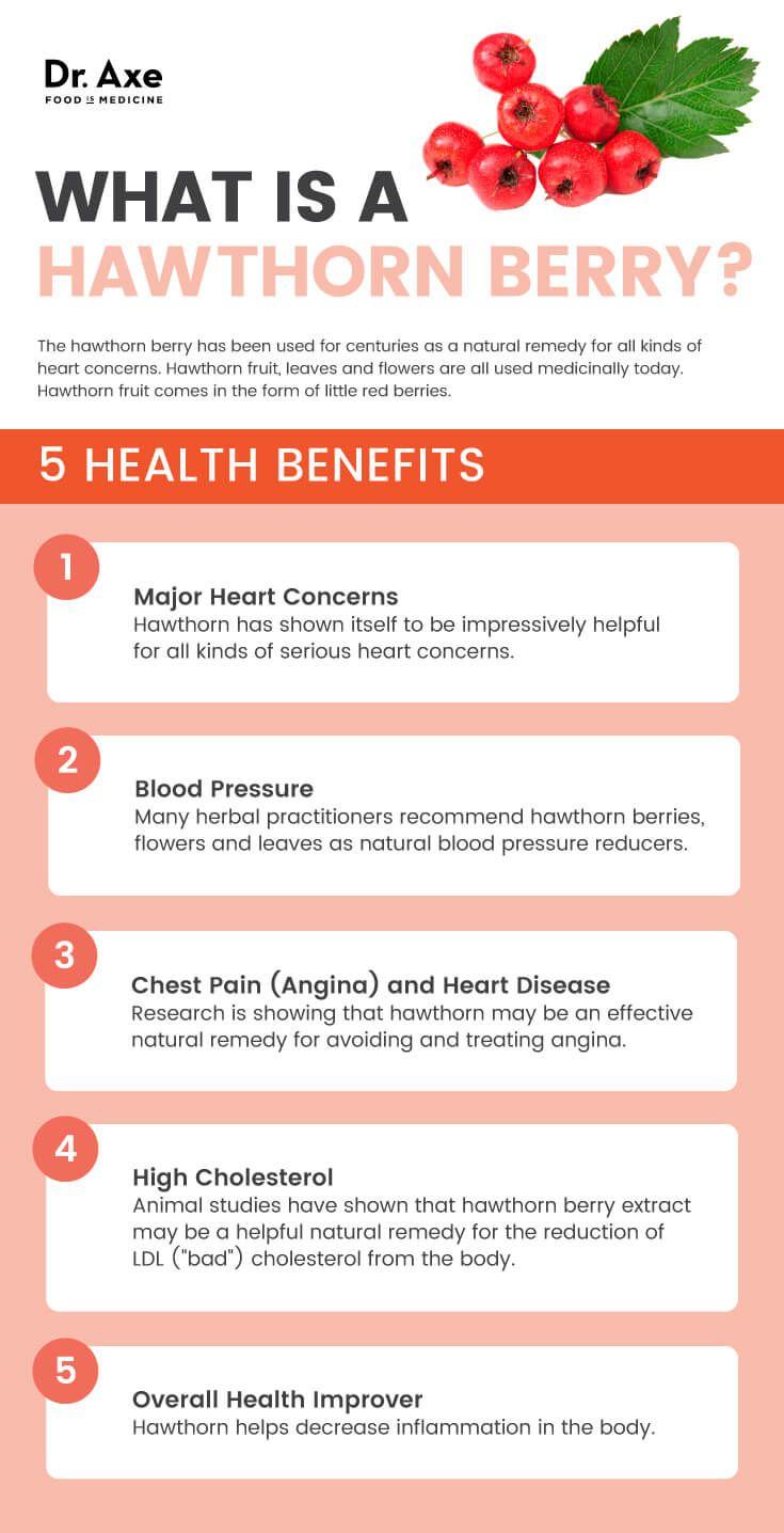 5 Hawthorn berry health benefits - Dr. Axe