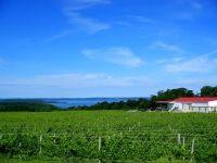 chateau-grand-traverse-winery-old-mission-peninsula-michigan