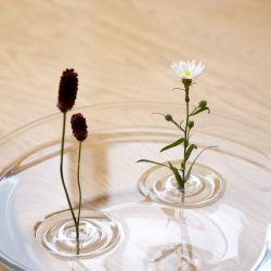 oodesign/Floating Vase RIPPLE