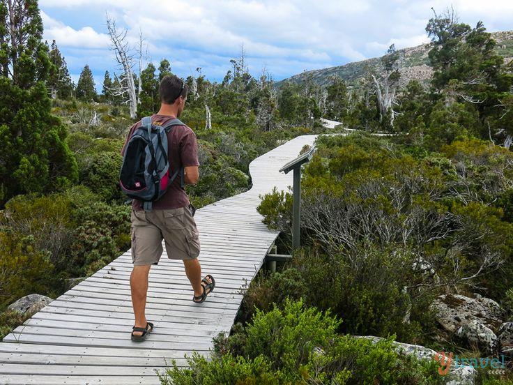 Pine Lake Walk Tasmania, Australia