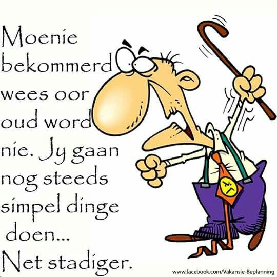 Nogsteeds